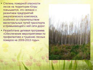 Степень пожарной опасности лесов на территории Югры повышается, это связано