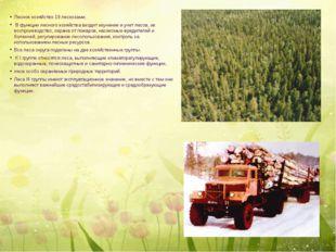 Лесное хозяйство 19 лесхозами. В функции лесного хозяйства входит изучение и