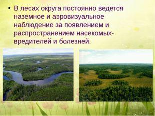 В лесах округа постоянно ведется наземное и аэровизуальное наблюдение за поя
