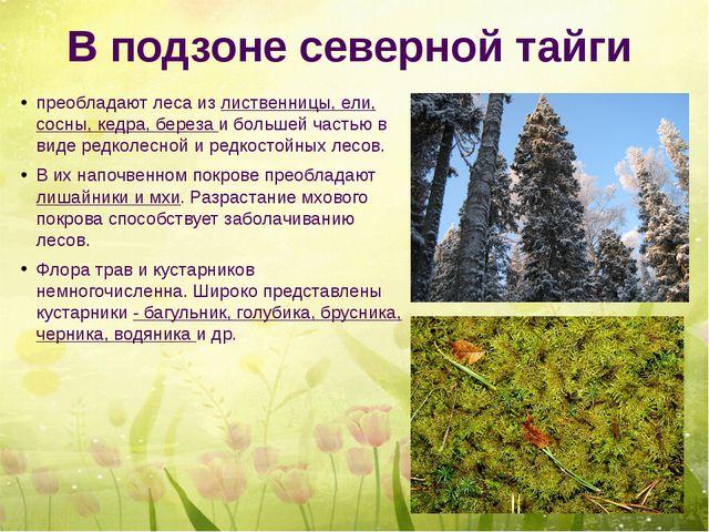 В подзоне северной тайги преобладают леса из лиственницы, ели, сосны, кедра,...