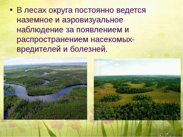 В лесах округа постоянно ведется наземное и аэровизуальное наблюдение за поя...