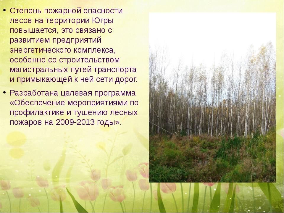 Степень пожарной опасности лесов на территории Югры повышается, это связано...
