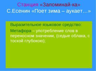 Станция «Запоминай-ка» С.Есенин «Поет зима – аукает…» Выразительное языковое