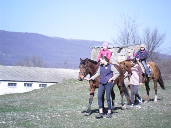 E:\кони\фото конюшня\SAM_4624.JPG