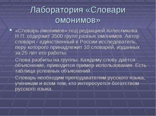 Лаборатория «Словари омонимов» «Словарь омонимов» под редакцией Колесникова Н