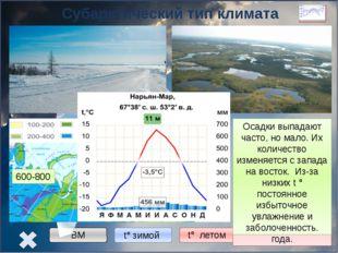 Континентальный тип климата Западная Сибирь -16° -20° -24° +12° +20° +24° 60