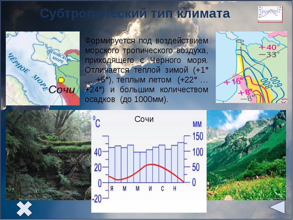 Задание 1. Используя климатические диаграммы, определите тип климата. Задани...