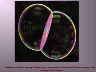 Мыльная мембрана имеет ряд общих черт с «горизонтом событий» отделяющим черну