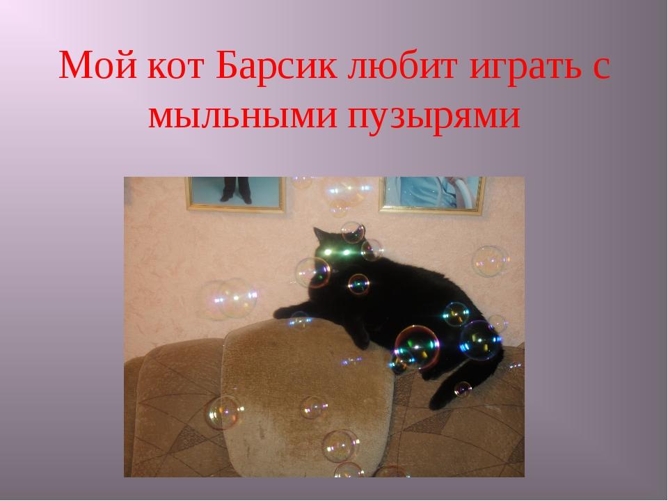 Мой кот Барсик любит играть с мыльными пузырями