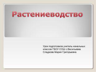 Урок подготовила учитель начальных классов ГБОУ СОШ с.Васильевка Сладкова Мар