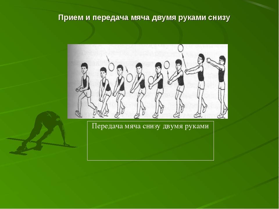 Прием и передача мяча двумя руками снизу