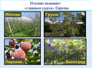 Италию называют «главным садом» Европы Яблоки Груши Персики Виноград