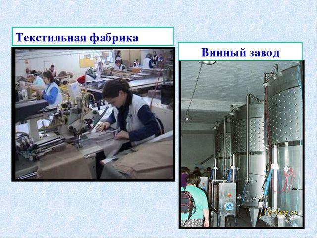 Винный завод Текстильная фабрика
