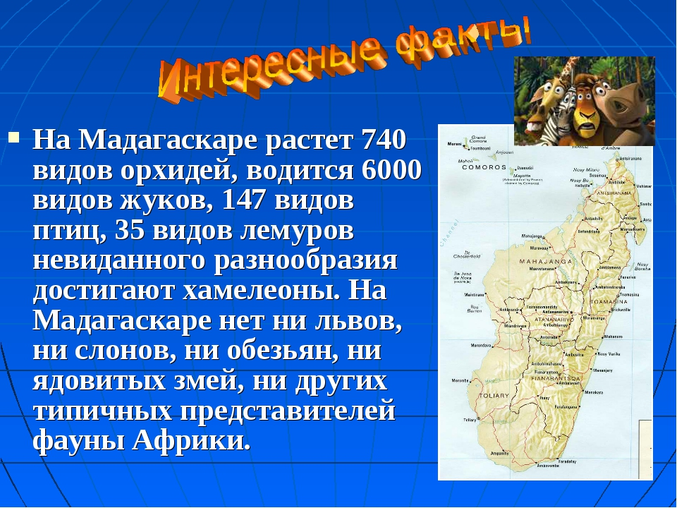 На Мадагаскаре растет 740 видов орхидей, водится 6000 видов жуков, 147 видов...