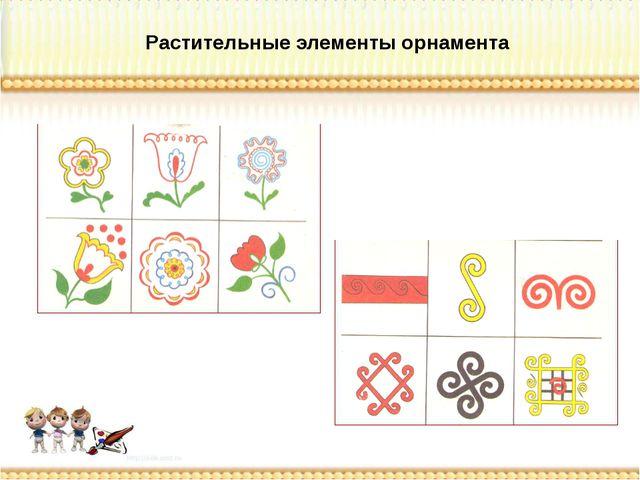 Растительные элементы орнамента