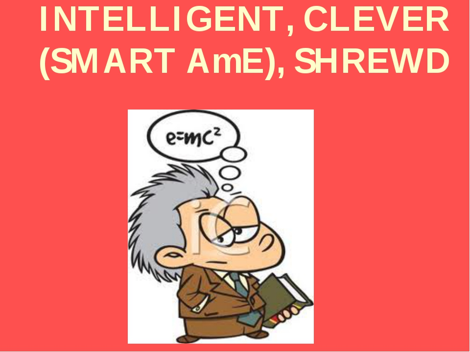INTELLIGENT, CLEVER (SMART AmE), SHREWD