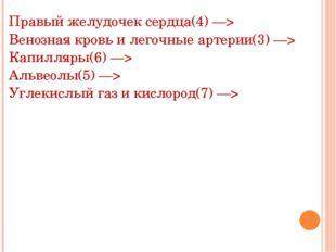 Правый желудочек сердца(4) —> Венозная кровь и легочные артерии(3) —> Капилля