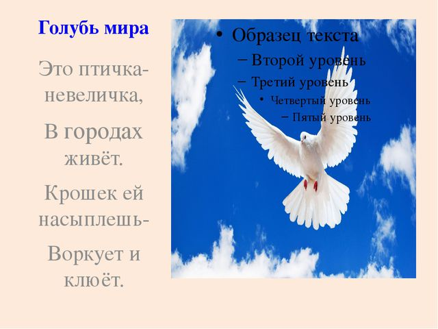 Голубь мира Это птичка-невеличка, В городах живёт. Крошек ей насыплешь- В...