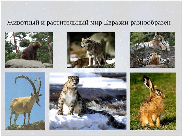 Животный и растительный мир Евразии разнообразен