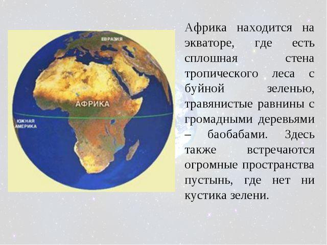 Африка находится на экваторе, где есть сплошная стена тропического леса с буй...