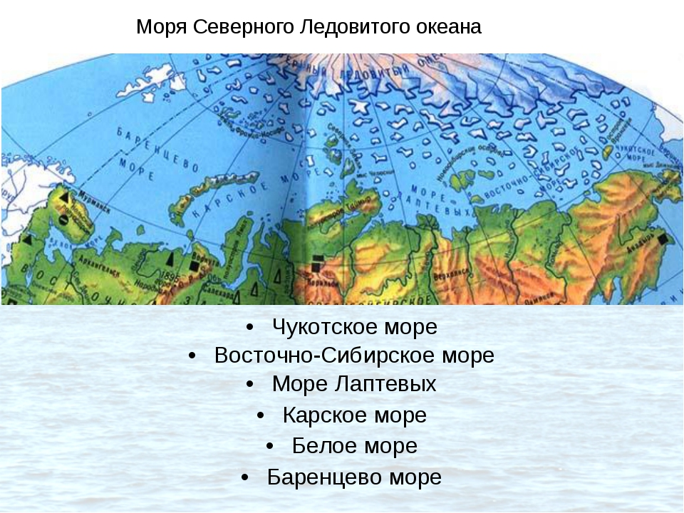 Чукотское море Восточно-Сибирское море Море Лаптевых Карское море Белое море...