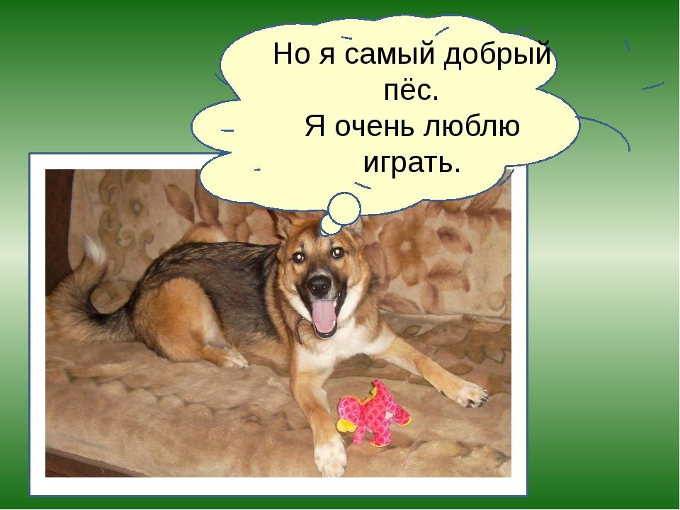 Но я самый добрый пёс. Я очень люблю играть.