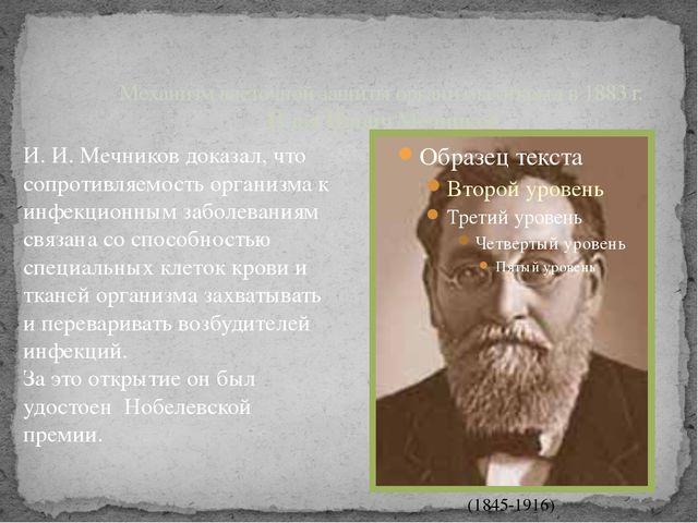 Механизм клеточной защиты организма открыл в 1883 г. Илья Ильич Мечников (184...