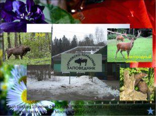 Животные лесной зоны Заповедники лесной зоны 2. Государственный природный зап