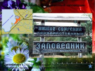 В России южная граница её ареала проходит через Ленинградскую и Вологодскую о