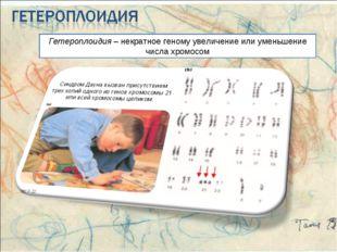 Гетероплоидия – некратное геному увеличение или уменьшение числа хромосом