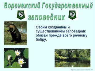 http://www.bober.ru/reserve/pitomnik.html Своим созданием и существованием за