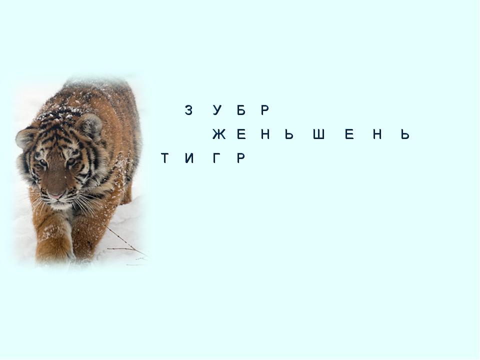 Р НЬШЕНЬ      ЗУБ ЖЕ ИГР    Т