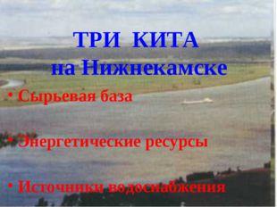 ТРИ КИТА на Нижнекамске Сырьевая база Энергетические ресурсы Источники водосн