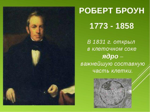 РОБЕРТ БРОУН 1773 - 1858 В 1831 г. открыл в клеточном соке ядро – важнейшую с...