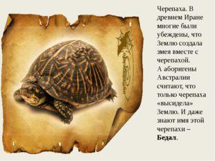 Черепаха. В древнем Иране многие были убеждены, что Землю создала змея вместе