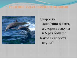 РЕШЕНИЕ ЗАДАЧ С ИЛЛЮСТРАЦИЯМИ Скорость дельфина 6 км/ч, а скорость акулы в 6