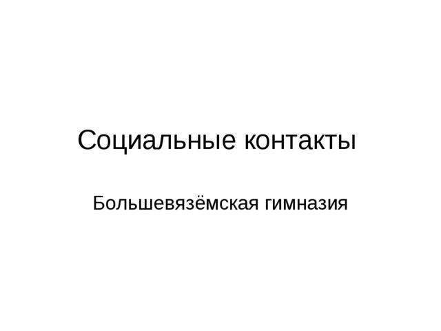 Социальные контакты Большевязёмская гимназия
