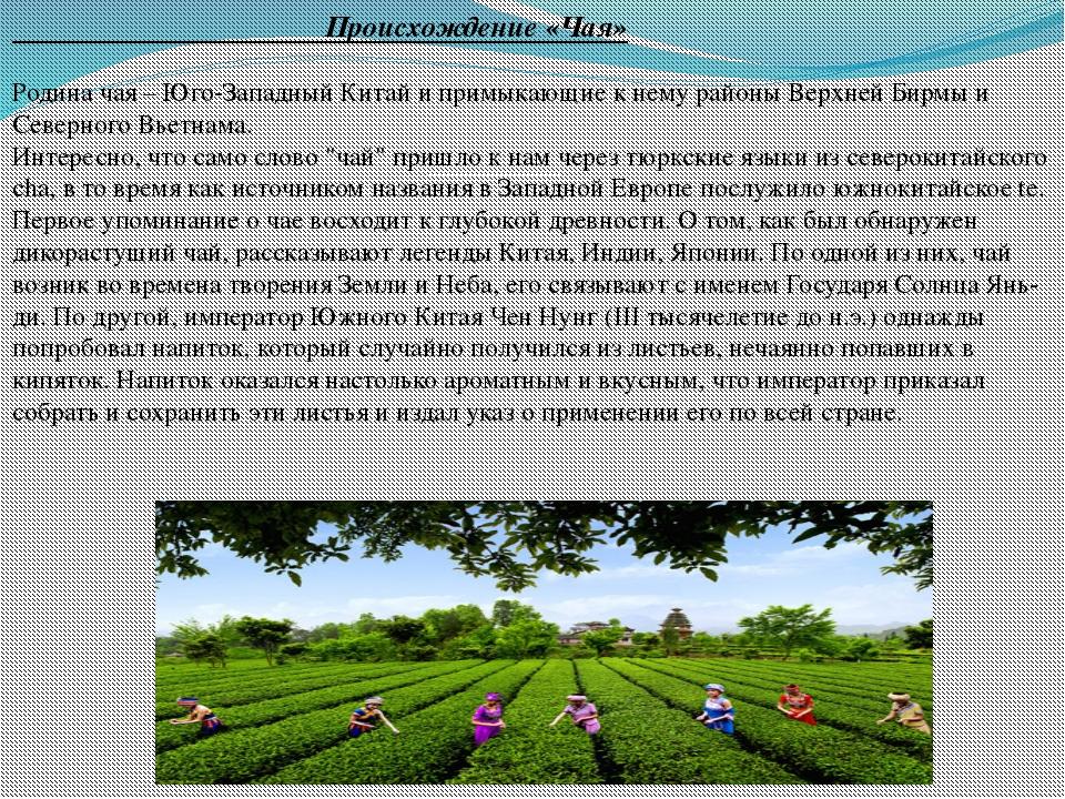 Происхождение «Чая» Родина чая – Юго-Западный Китай и примыкающие к нему рай...