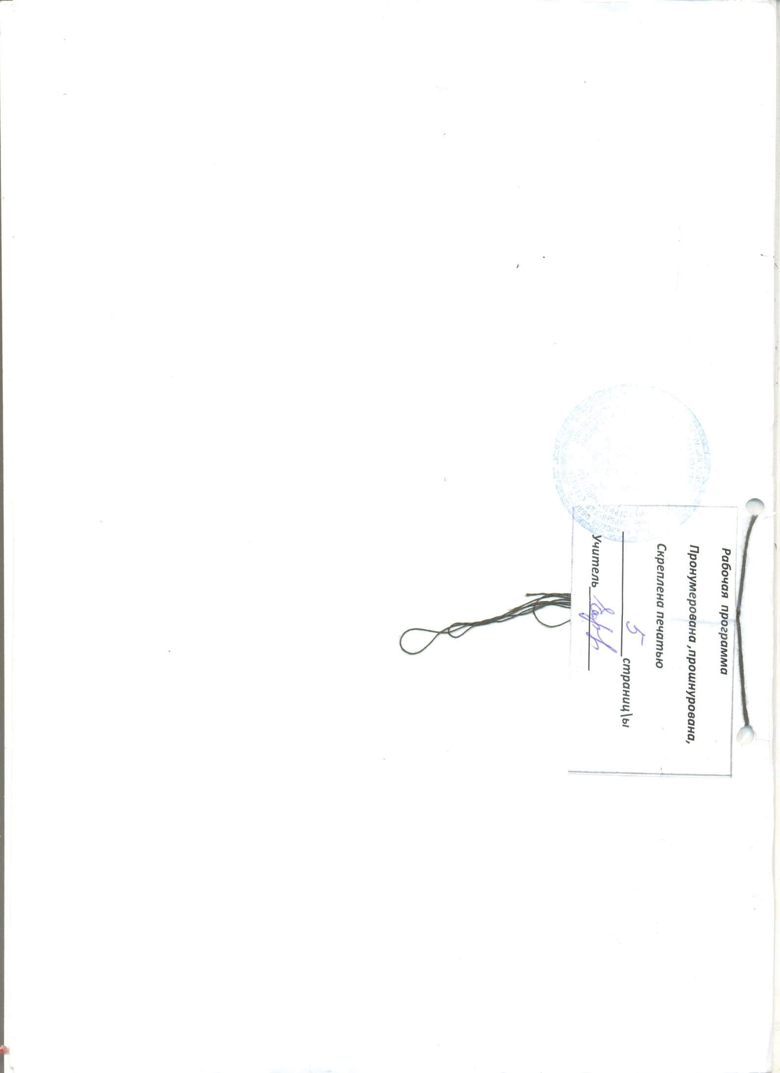 E:\ИСКЛЮЧЕНИЯ\ДОКУМЕНТЫ\планирование\2013-11-06 8 КЛАСС\8 КЛАСС 006.jpg