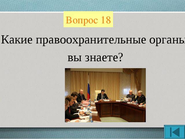 Вопрос 18 Какие правоохранительные органы вы знаете?