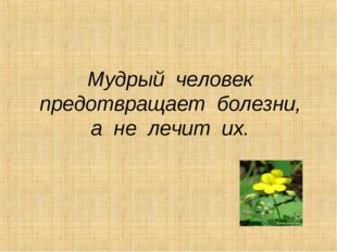 Мудрый человек предотвращает болезни, а не лечит их.