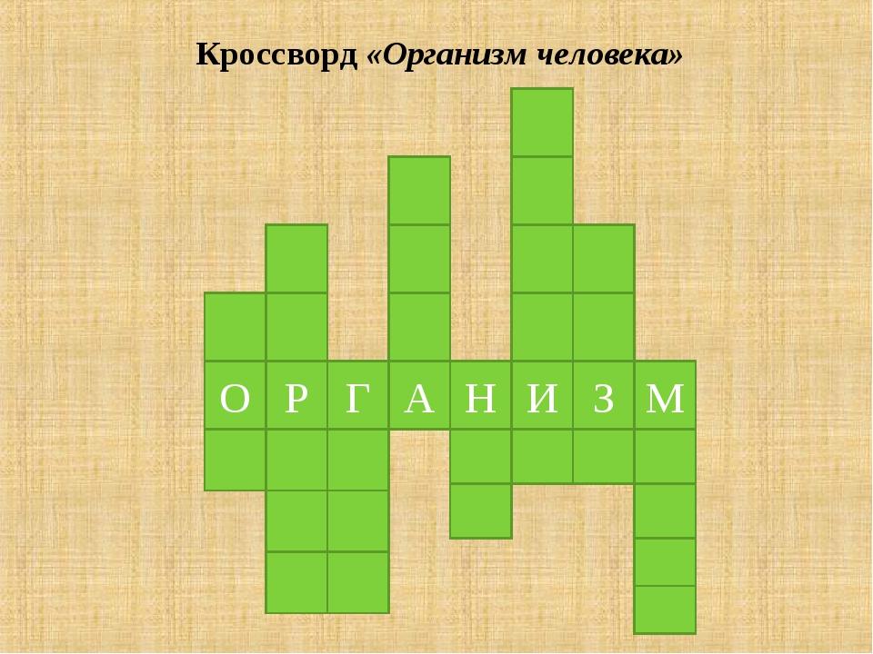 Кроссворд «Организм человека» О Р Г А Н И З М