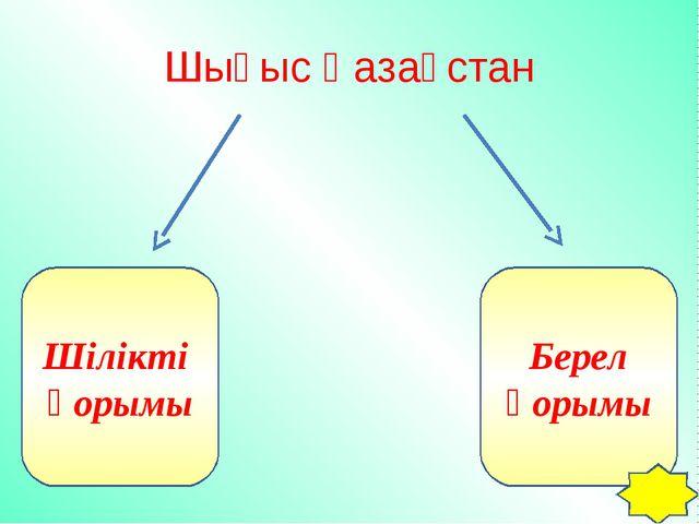 Шығыс Қазақстан Шілікті қорымы Берел қорымы