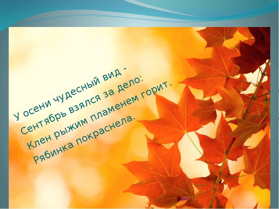 У осени чудесный вид - Сентябрь взялся за дело: Клен рыжим пламенем горит. Р...