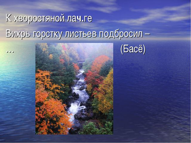 К хворостяной лач.ге Вихрь горстку листьев подбросил – …(Басё)