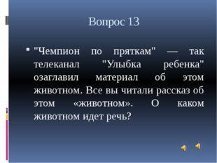 """Вопрос 13 """"Чемпион по пряткам"""" — так телеканал """"Улыбка ребенка"""" озаглавил мат"""