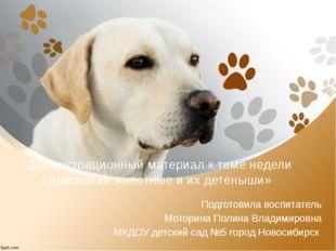 Демонстрационный материал к теме недели «Домашние животные и их детеныши» По
