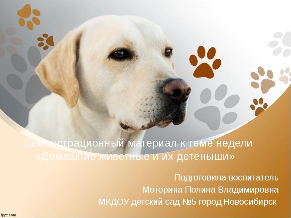 Демонстрационный материал к теме недели «Домашние животные и их детеныши» По...