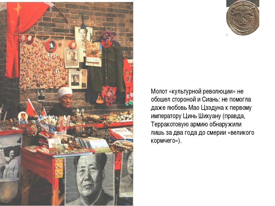 Молот «культурной революции» не обошел стороной и Сиань: не помогла даже любо...