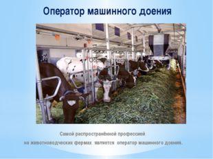 Оператор машинного доения Самой распространённой профессией на животноводческ